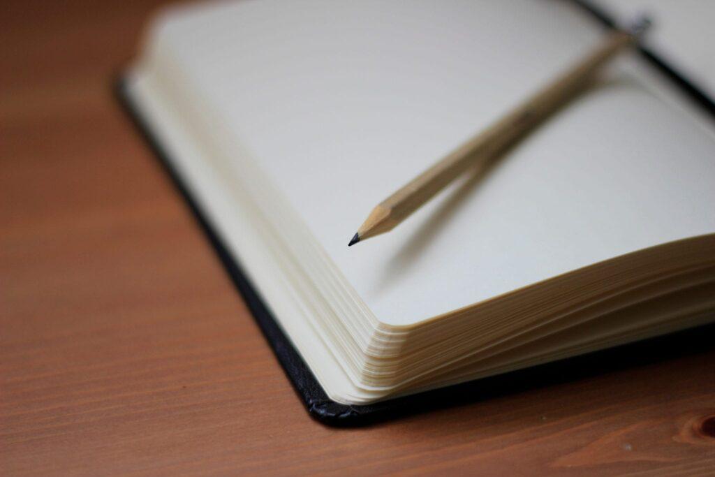 boek spreekwoorden: in het verdomboekje staan